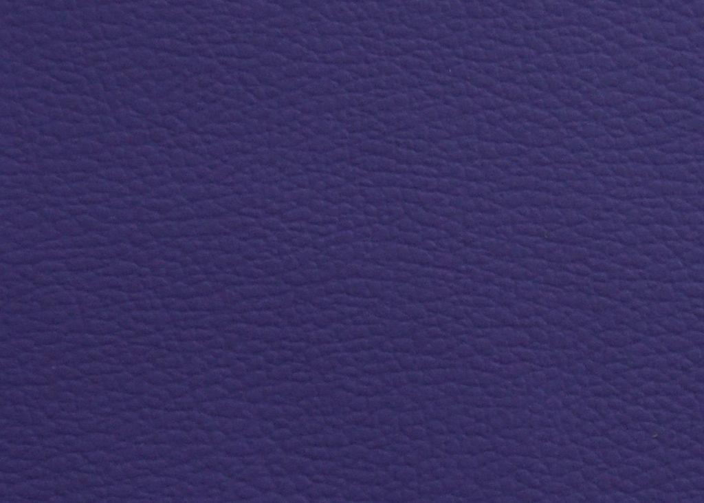 P0536 - Purple